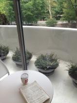 Guggenheim Cafe
