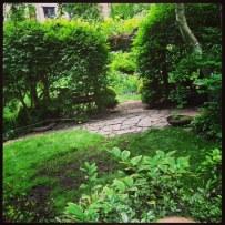 view from garden perch